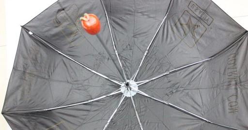 Promotional Umbrella, #1101-007-4, US army