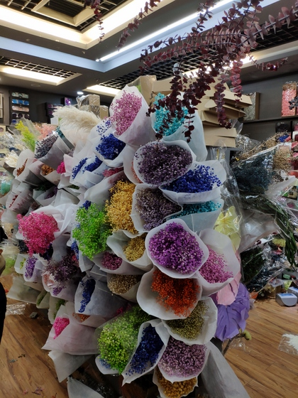 9108 WONWAY Dry Flowers Showroom 002