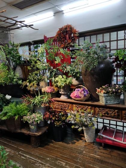 9121 LouJia Flowers Showroom 009