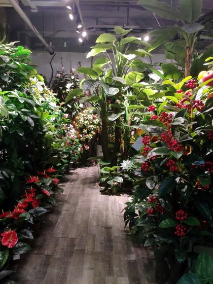 9177 Chenghui Fake Plants Showroom 002