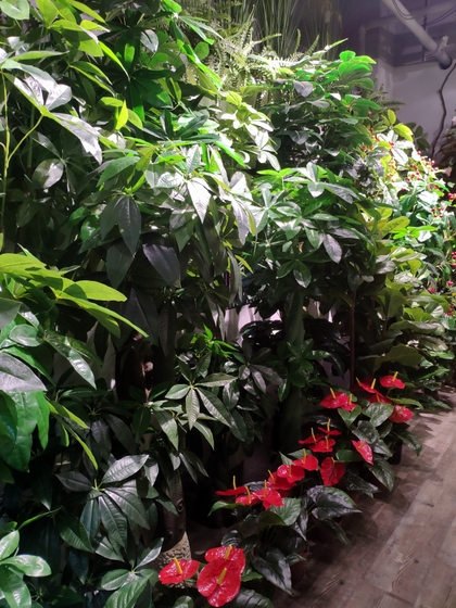 9177 Chenghui Fake Plants Showroom 003