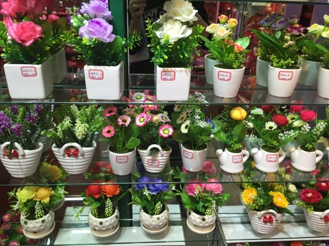 Cheap-Potted-Flowers-Wholesale-Yiwu-China-002.jpg