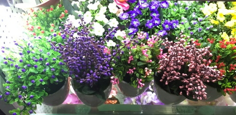 Cheap-Potted-Flowers-Wholesale-Yiwu-China-005.jpg