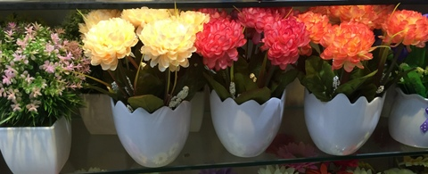 Cheap-Potted-Flowers-Wholesale-Yiwu-China-009.jpg