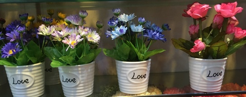Cheap-Potted-Flowers-Wholesale-Yiwu-China-010.jpg
