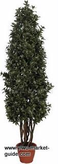 trees wholesale Yiwu China