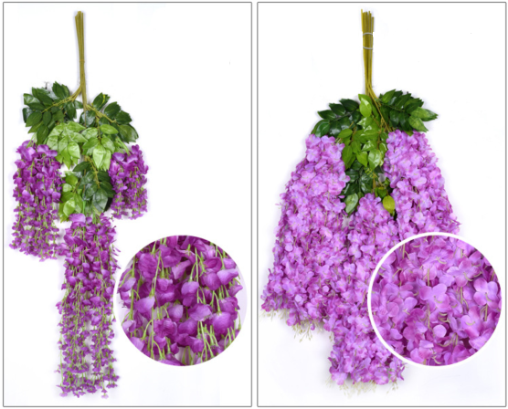 Wisteria flower petal difference between classical long version and new lush version.