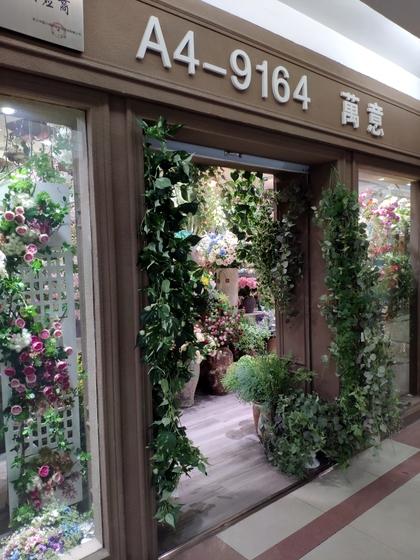 9164 Wanyi Flowers