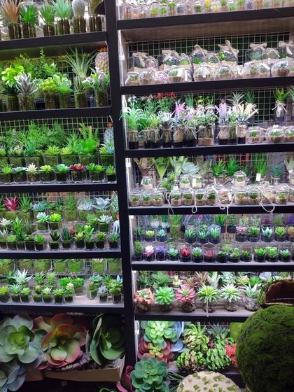9165 YuanXinXin Flowers Showroom 002