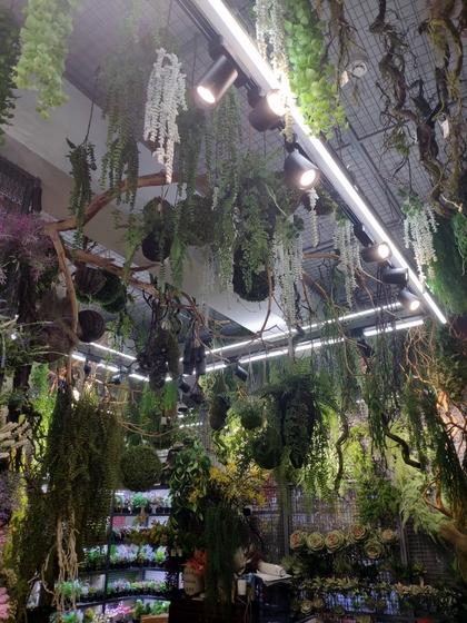 9165 YuanXinXin Flowers Showroom 004