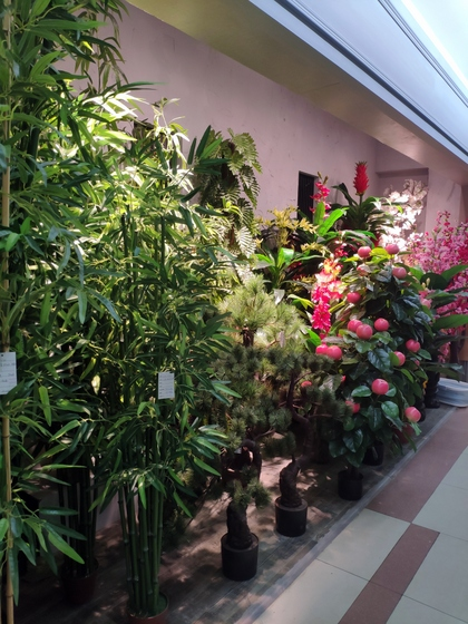 9177 Chenghui Fake Plants Showroom 001