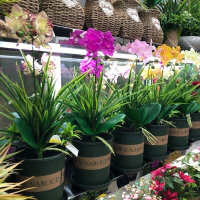 orchid-and-flowers-wholesale-yiwu-market-china-1