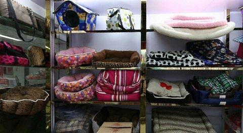 pets-products-wholesale-yiwu-china